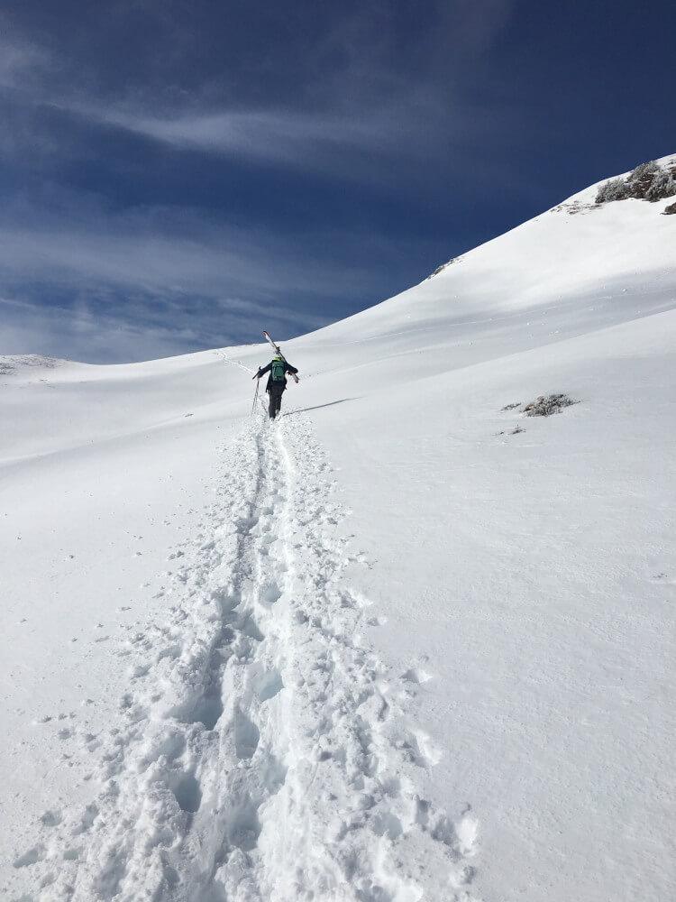 Ski-Tagesfahrt mit Skitour